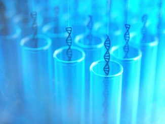 Robot DNA