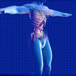 Nuova collaborazione tra Amgen ed IBM: un assistente virtuale personalizzato al servizio dei nefrologi