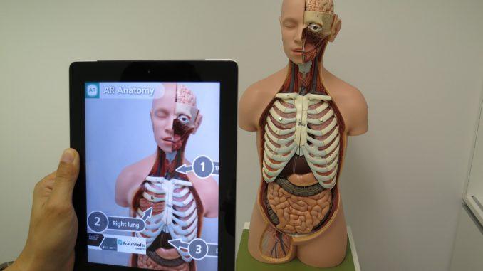 ingegneria biomedica