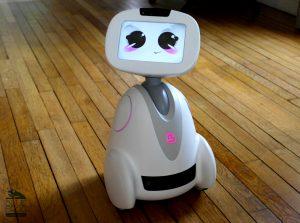 Buddy Robot