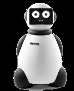Dumy Robot