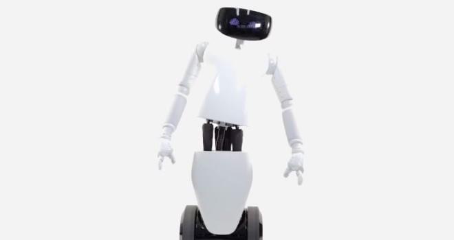 Social robot - robot R1